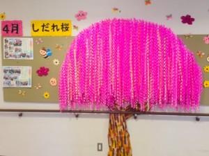 枝垂桜_1439